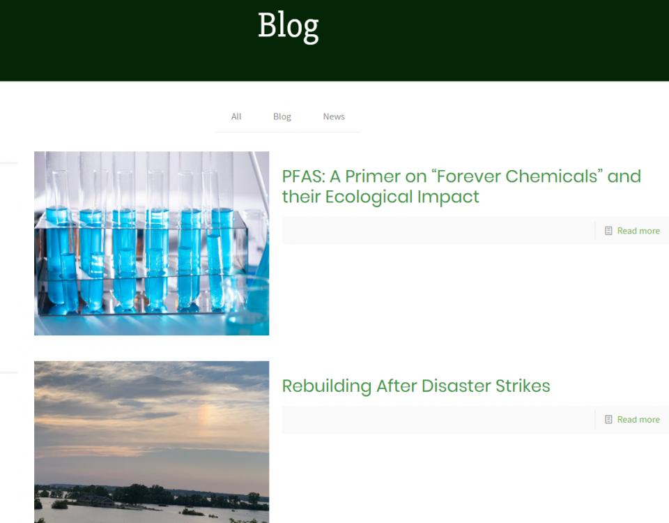 screenshot of a website blog page