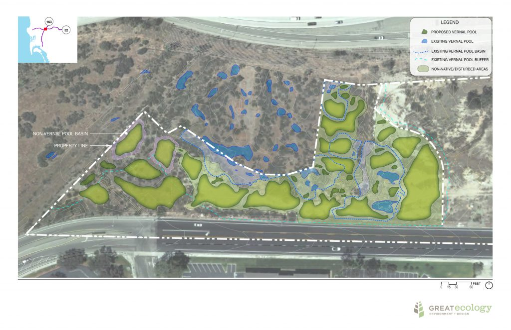 Conceptual plan of vernal pool restoration