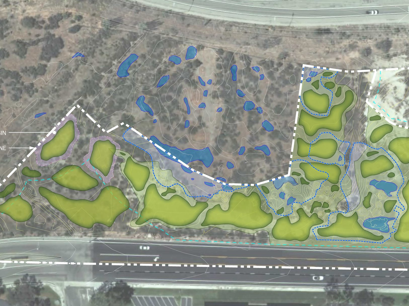 Vernal Pool Restoration & Mitigation Permitting