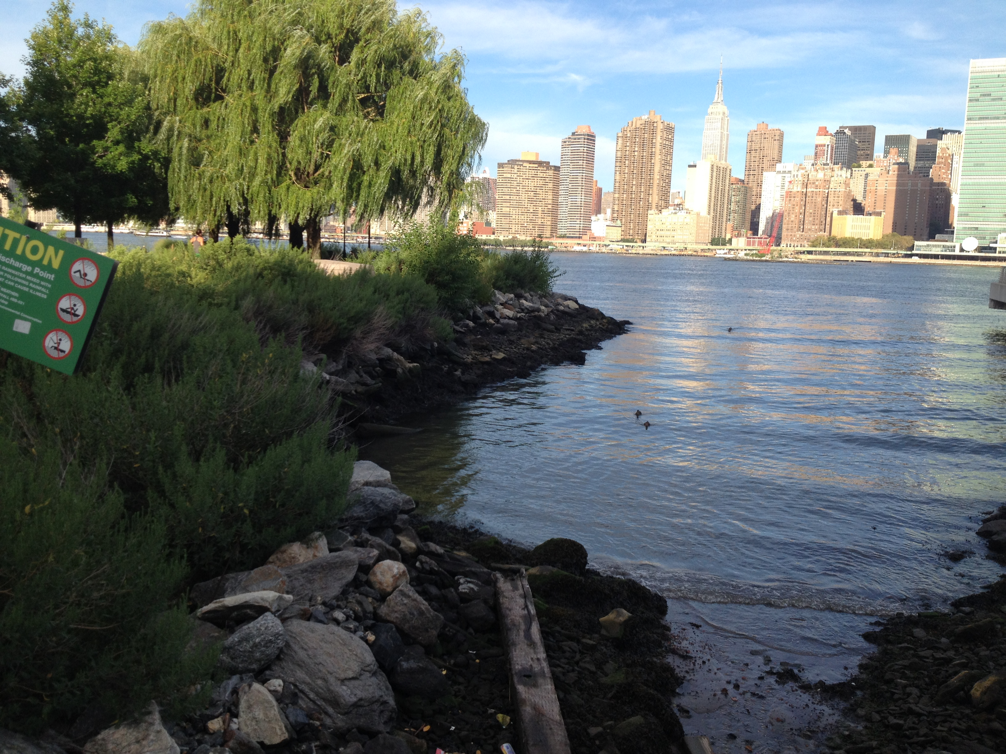 A rocky point overlooking the skyline of NYC with some trees and grasses