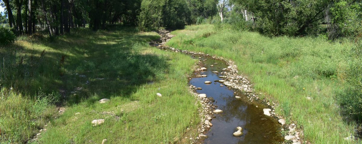 Restoration of a creek at Year 1, which includes shoreline stabilization features and grasses