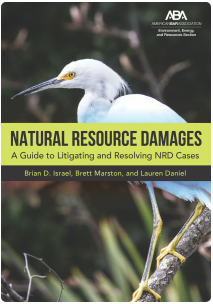 Book cover for Natural Resource Damages