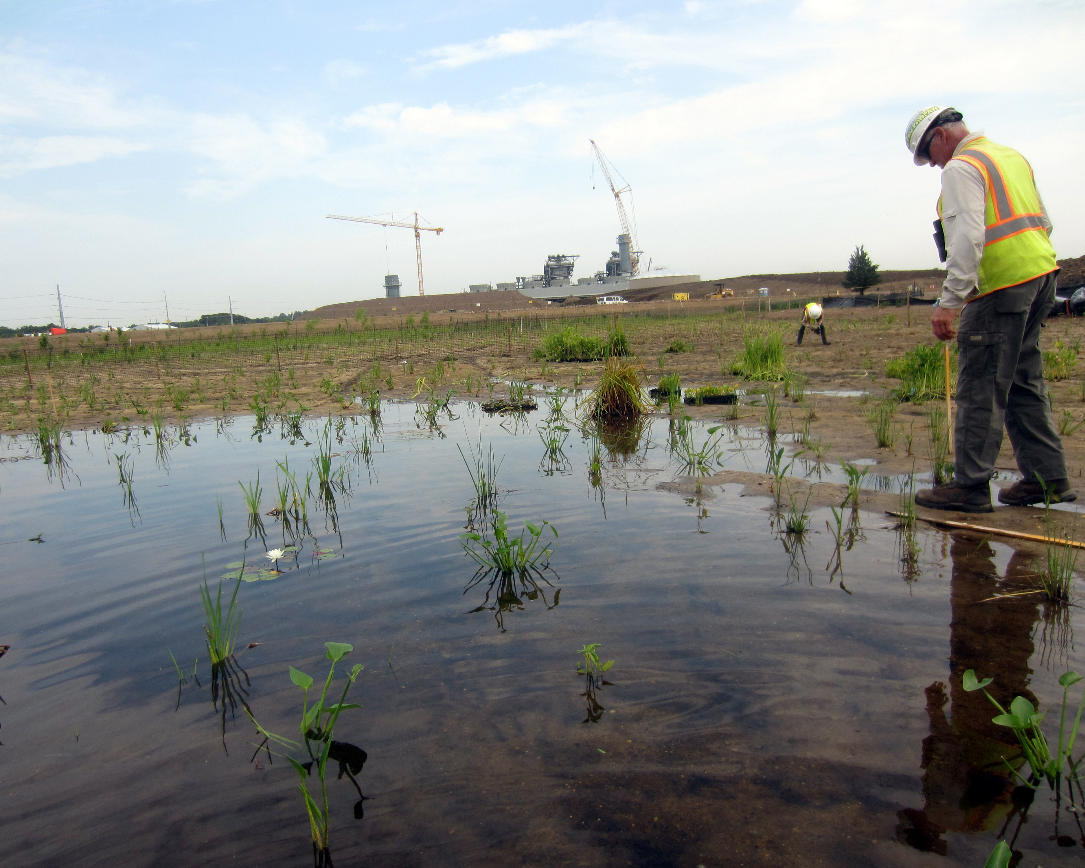 photo showing two men in high visibility vests planting plants in a wetland