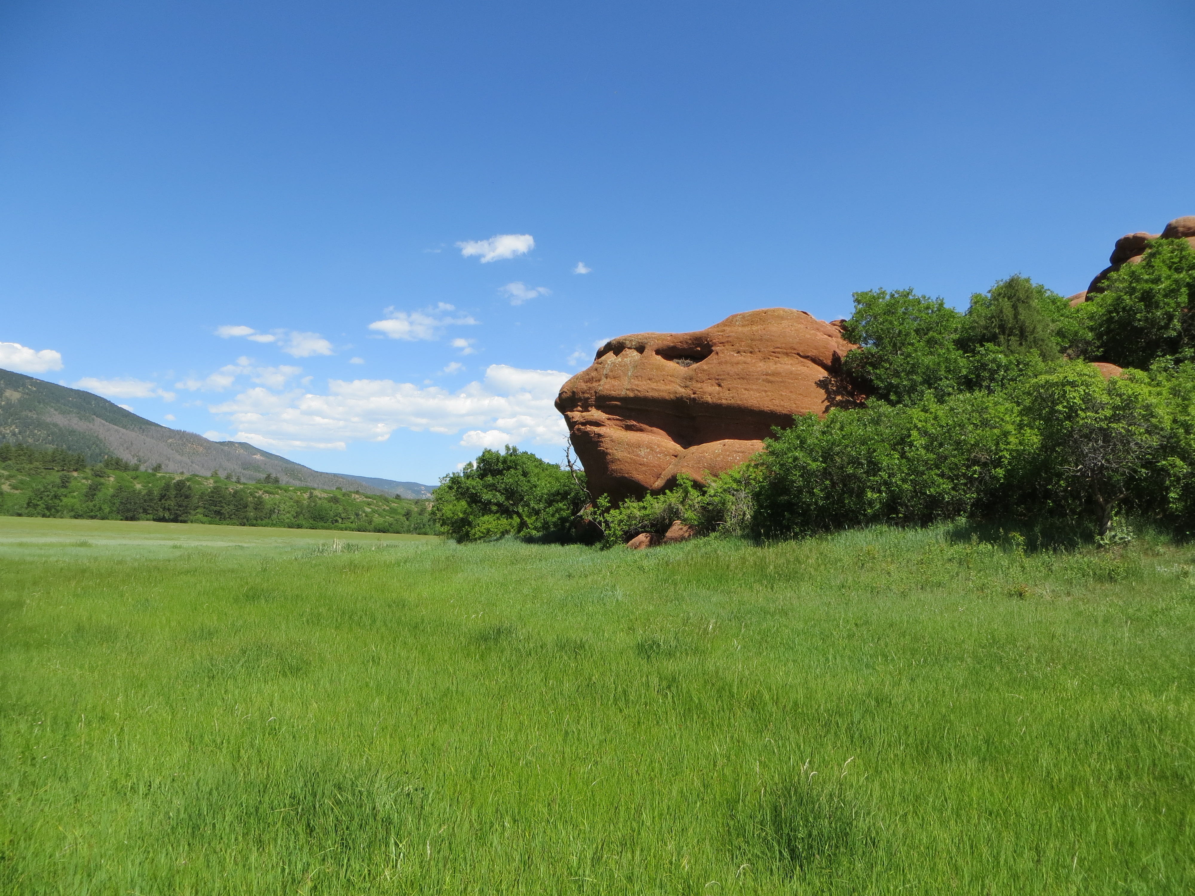 A red rock in a green pasture
