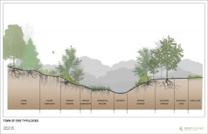rendering showing different landscapes