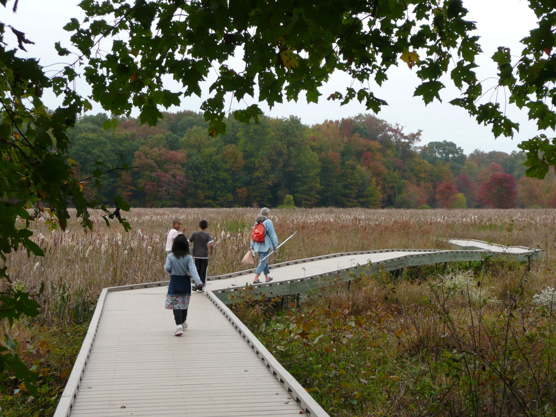 Woman and kids walking on wood boardwalk over wetland