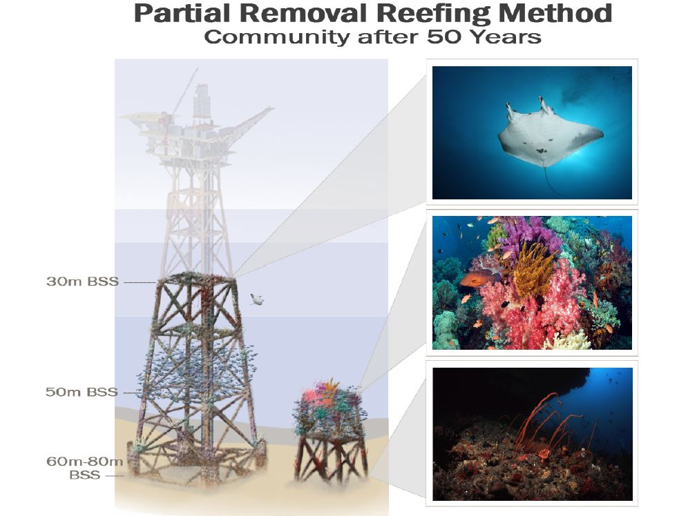 Graphic and photos showing the progression of reef growth after 50 years on a former oil platform using the Partial Removal method