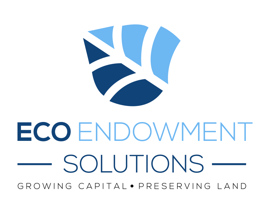 Eco Endowment Solutions Cropped