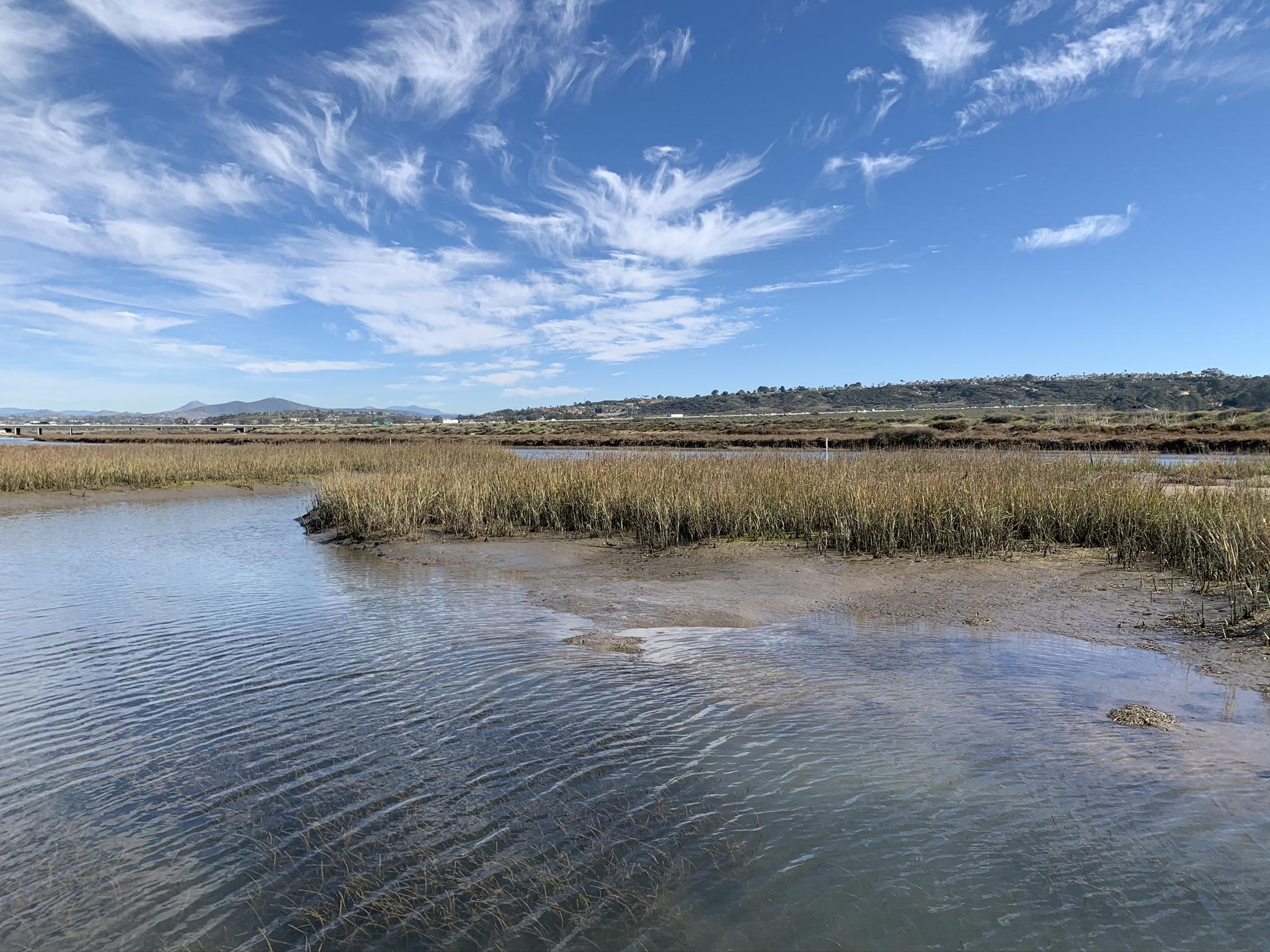San Dieguito Lagoon - after