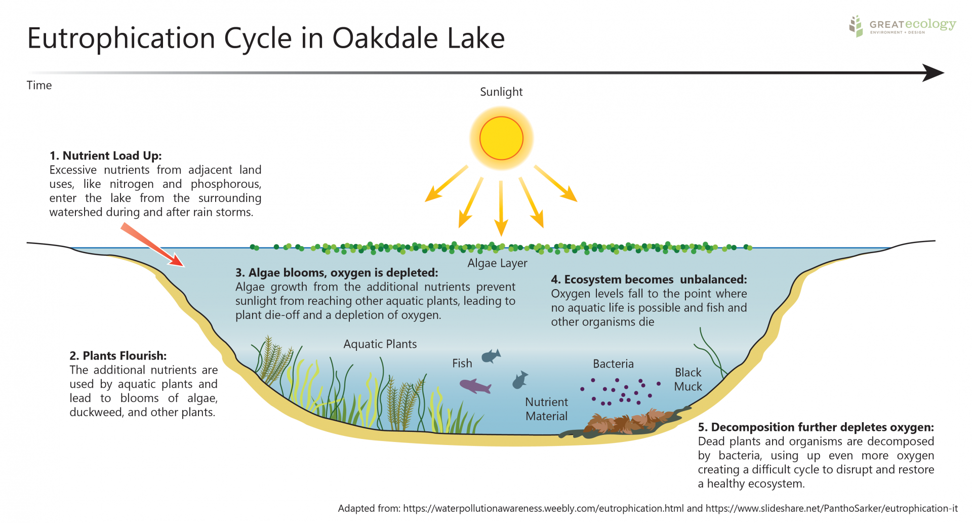 FOL_Eutrophication Graphic_20210505_WITH GE LOGO (for marketing use)