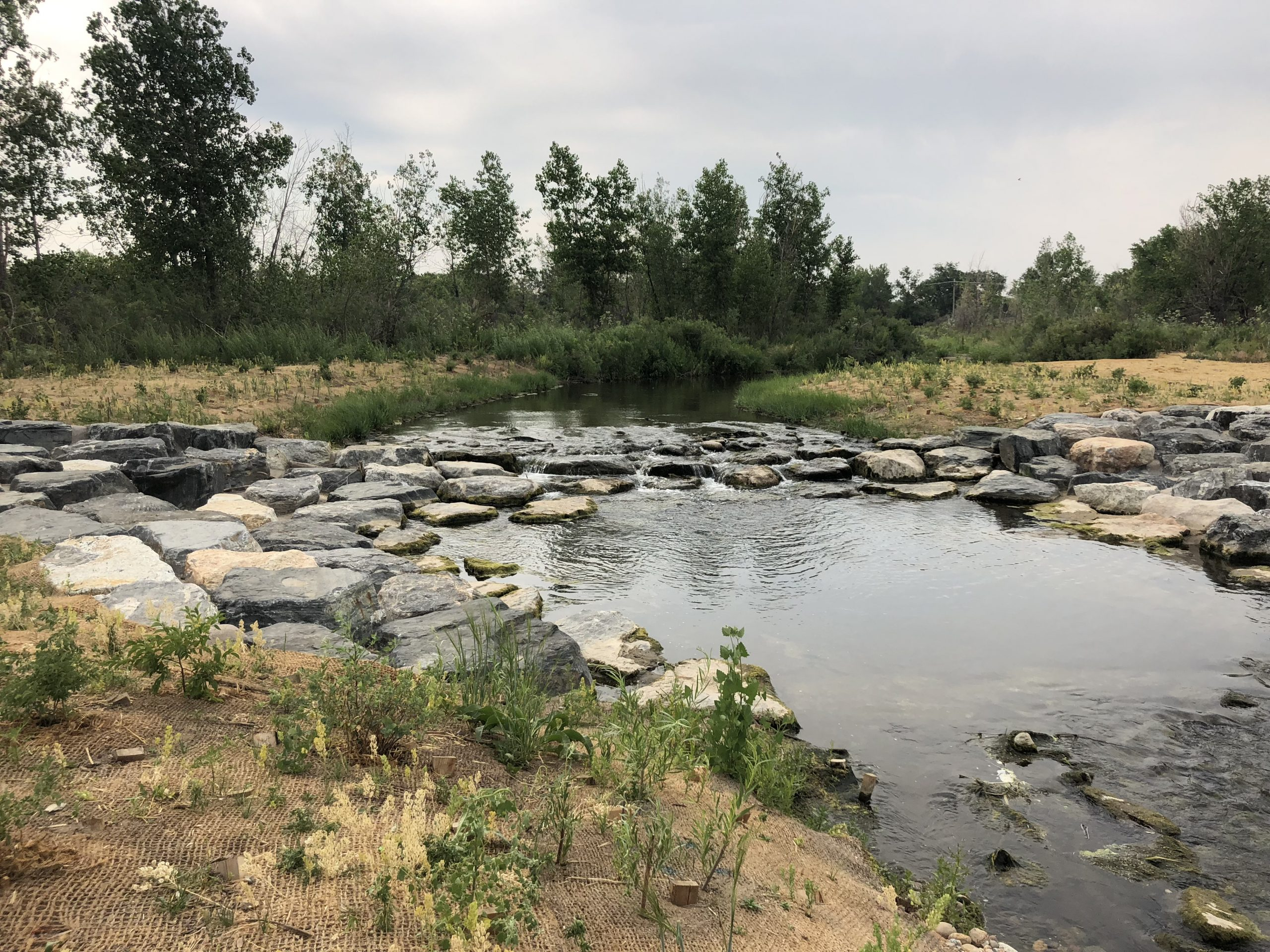 Cherry Creek Ecological Support