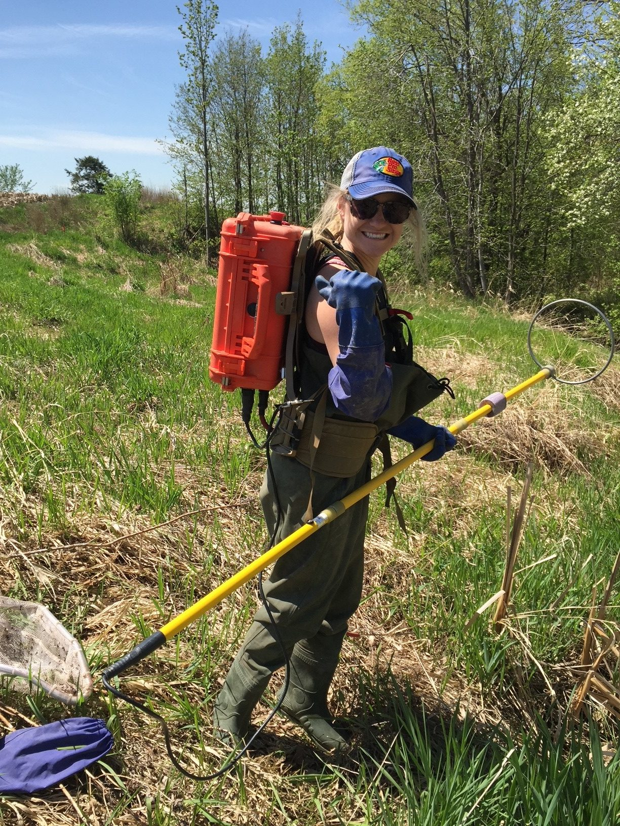 Featured Ecologist: Cate Collinson, P. Biol