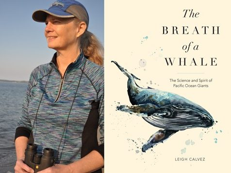 Book Review: The Breath of a Whale
