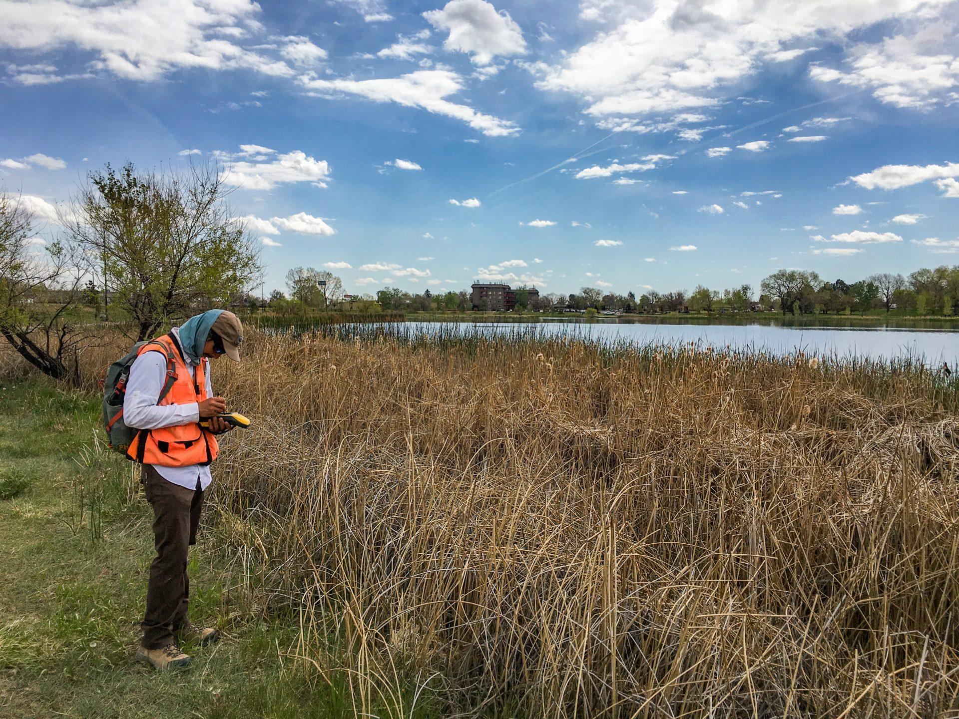 Justin Apfel wetland delineation