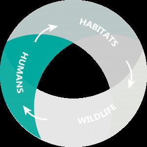NRDA Holistic Stakeholder Portfolio – humans only