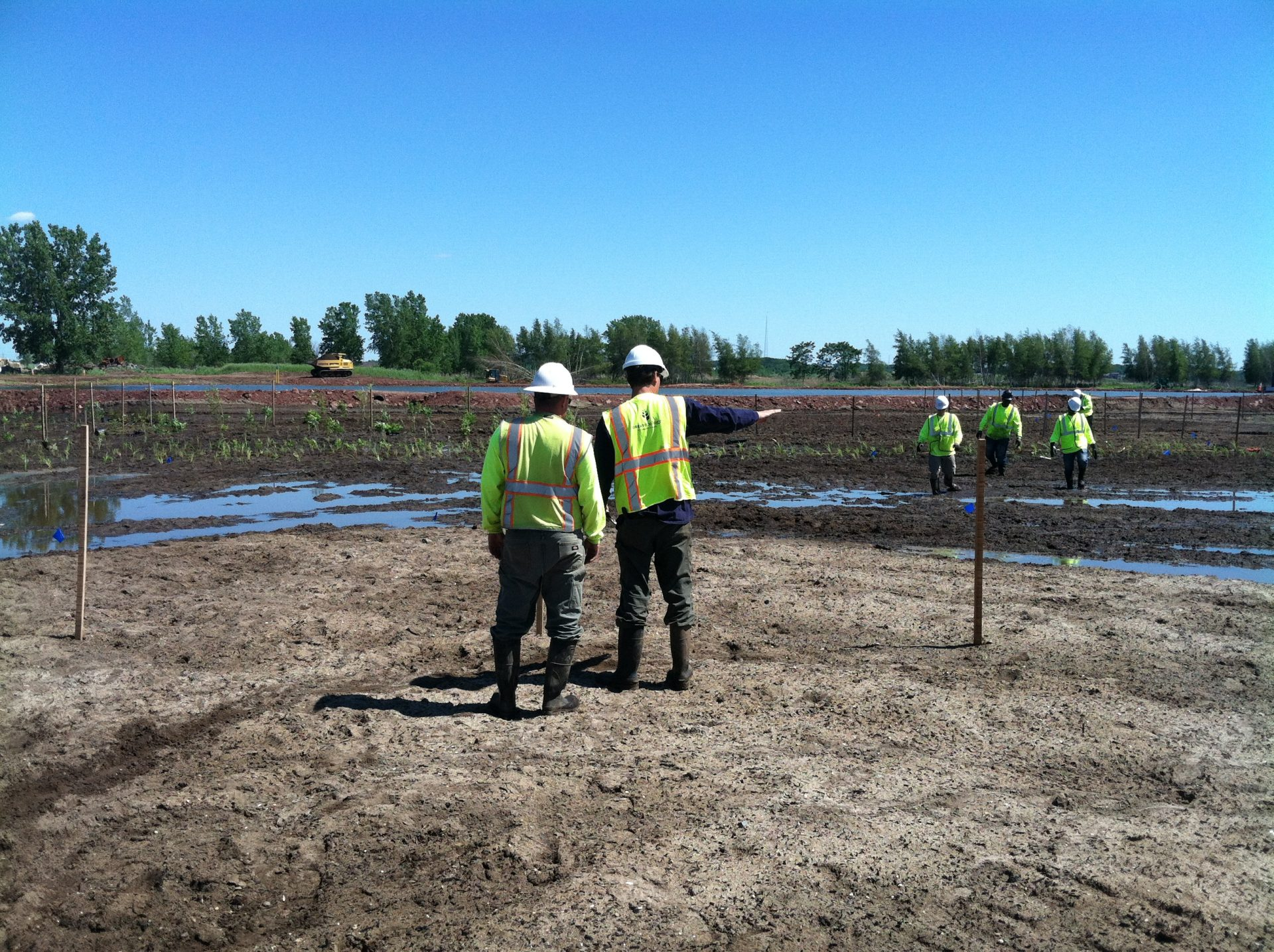 Woodbridge Waterfront Park-Wetland Restoration Planting